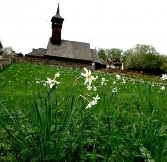 Church of Horea