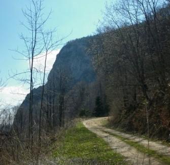 Trasee pentru drumetii in jurul statiunii Olanesti